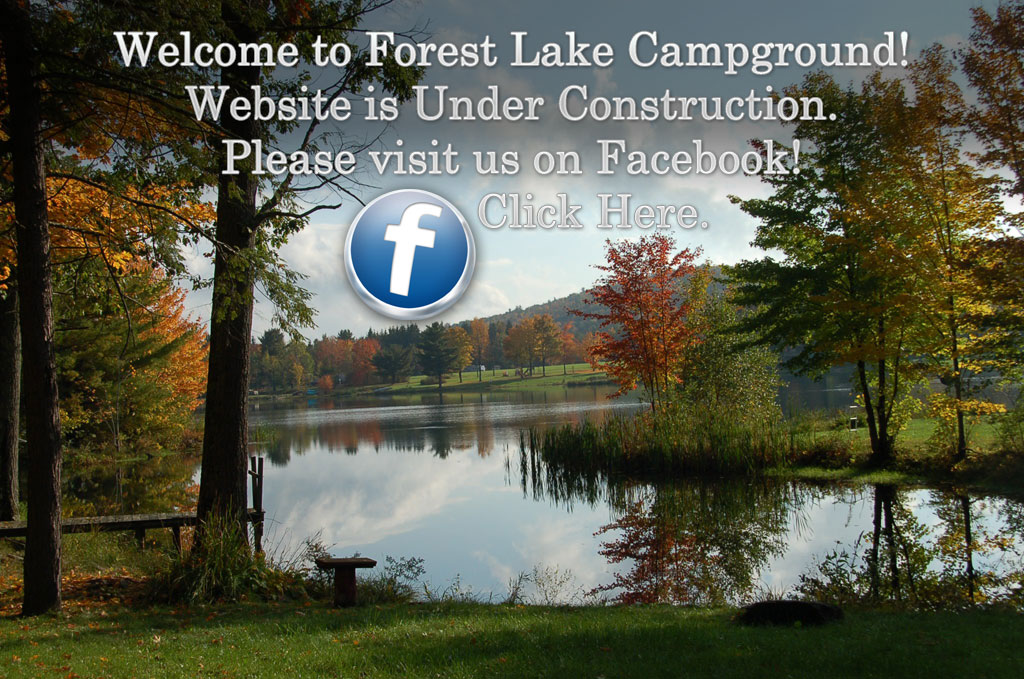 Welcome to Forest Lake Campground!